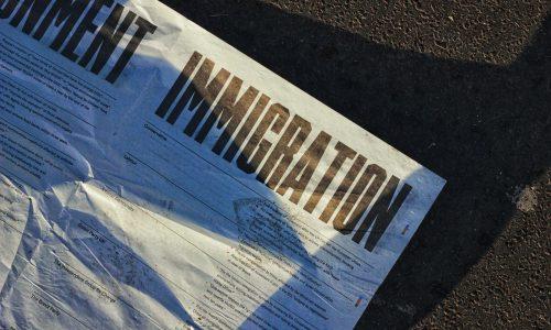 Sınırdışı kararına itiraz dilekçesi örneği, sınır dışı edilme kararına itiraz, özellikle deport kararına itiraz, sınırdışı etme kararının iptali